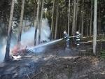Lesní požár v Jiřetíně pod Bukovou