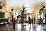Zdobení vánočního stromu ve vstupní hale vrchlabského zámku