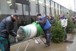 Prodej smrčků z krkonošských lesů s certifikátem FSC před budovou KCEV Krtek ve Vrchlabí