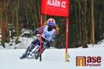 Sobotní obří slalom v rámci MČR a ČP v jízdě na skibobech v Jablonci nad Jizerou
