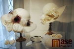 Vernisáž výstavy S noblesou! ve výstavní síni semilského muzea
