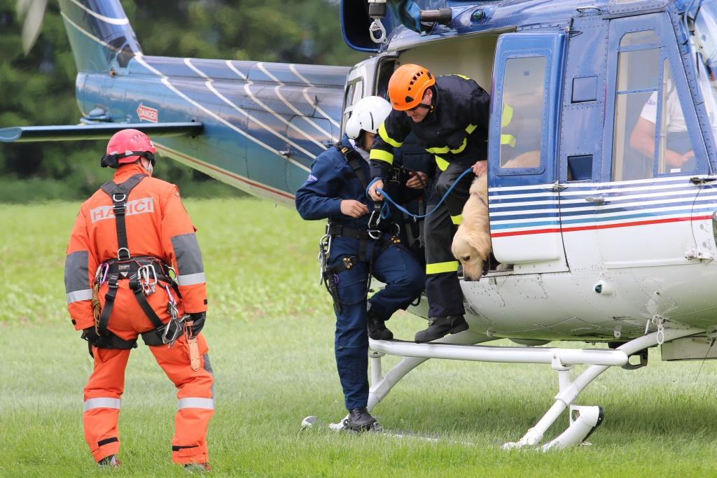 Taktické cvičení složek IZS, jejímž námětem byl nácvik přepravy kynologů s využitím vrtulníku<br />Autor: HZS Libereckého kraje, Zdenka Štrauchová
