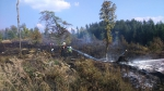Požár lesa nedaleko Hrabačova u Jilemnice