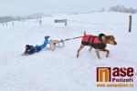 Horseskijöring v Lánově u Vrchlabí