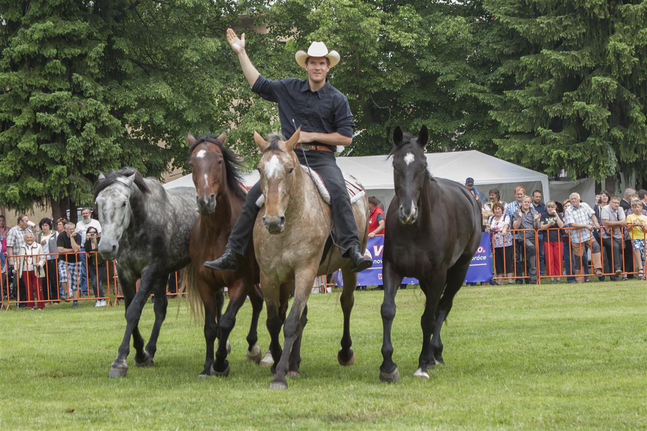 Já mám koně v roce 2016<br />Autor: Archiv města Lomnice nad Popelkou