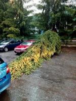 Následky bouřky v Jilemnici