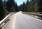 Lesní cesta Bedřichovská
