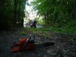 Zásahy hasičů po bouřce a silném větru