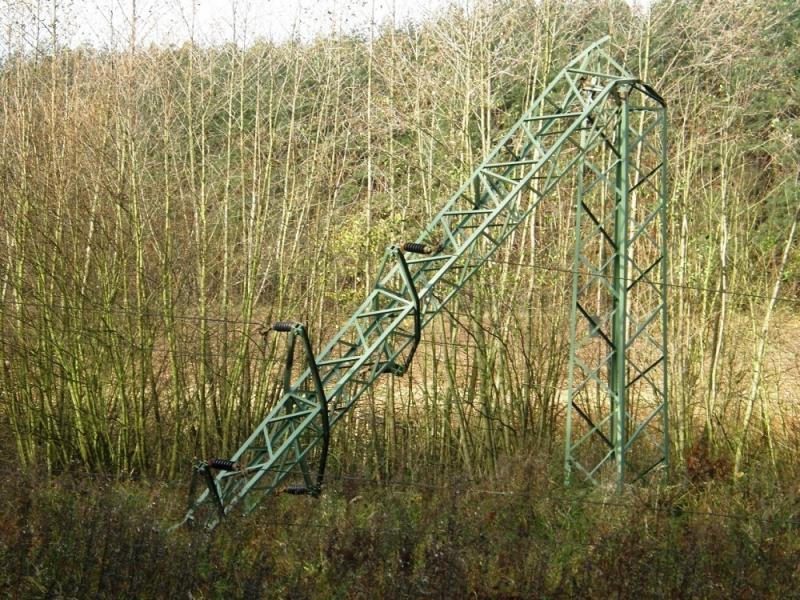 Škody na energetických sítích způsobené orkánem Herwart
