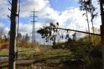 ČEZ Distribuce vyčíslila škody způsobené orkánem Herwart