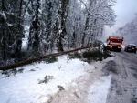 Spadlé stromy na silnicích