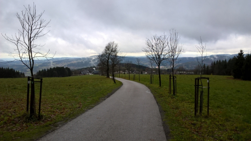 Druhá alej v Libereckém kraji - na cestě z Příchovic k rozhledně Štěpánka