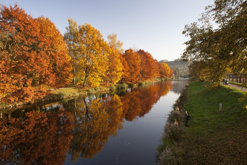 Třetí v Libereckém kraji - dubová alej v parku Ostrov v Semilech<br />Autor: Jana Dvořáková