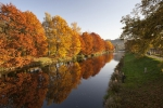Třetí v Libereckém kraji - dubová alej v parku Ostrov v Semilech