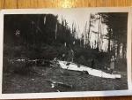 Spadlé letadlo u Lomnice nad Popelkou v roce 1947