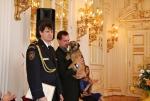 Slavnostní předávání Zlatých záchranářských křížů na Pražském hradě