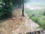 Kvůli bouřce padaly stromy a hasiči zasahovali zejména v Pojizeří