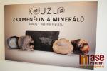 FOTO: V semilském muzeu ožívá Kouzlo zkamenělin a minerálů