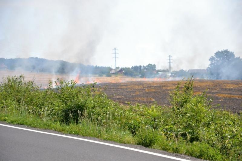 Požár pole v Radostné pod Kozákovem<br />Autor: HZS Libereckého kraje, stanice Semily, Josef Plíva