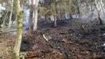 Rozsáhlý požár lesa v Hamru na Jezeře nedaleko Stráže pod Ralskem