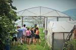 Skleník smelouny jako výsledek rozvojového projektu organizace Člověk vtísni v mikroregionu Trejrola