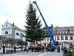 Stavění vánočního stromu na turnovském náměstí