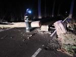 Zásahy hasičů při odstraňování stromů