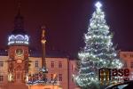 Na porovnání vánoční strom v blízkém Hostinném