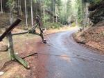 Škody po ničivém orkánu Eberhard