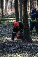 Cvičení hasičů v práci s motorovou pilou