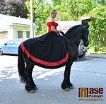 Krajský den koně v Lomnici nad Popelkou 2019
