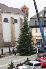 Stavění stromu na turnovském náměstí