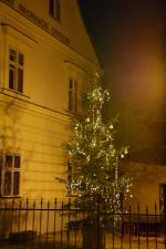 Svítí již také vánoční stromek před semilským muzeem
