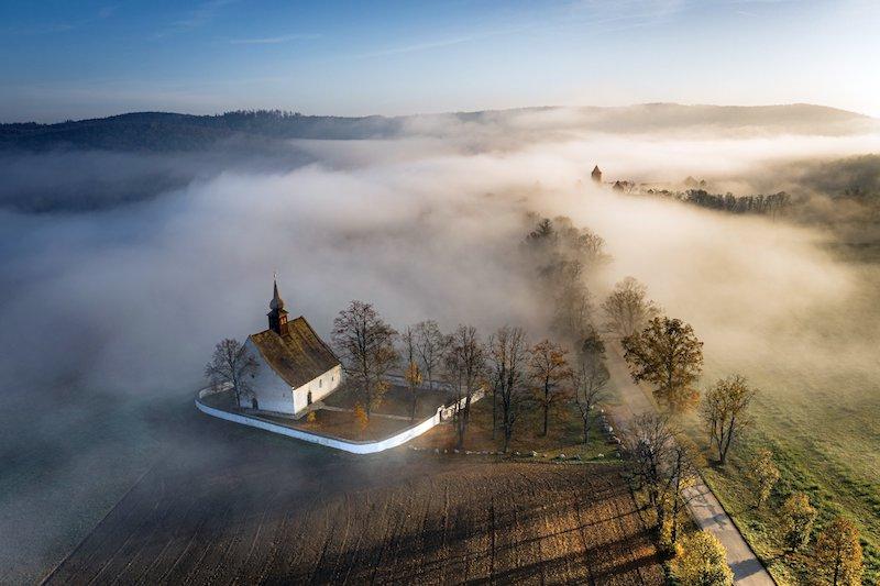 Lipová alej u hradu Veveří<br />Autor: Archiv Arnika