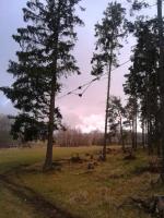 Škody po orkánu Sabine v západních Čechách