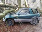 Pád stromů na auta v Jenišovicích