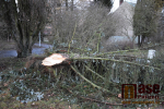 FOTO: Sabine lámala stromy i přímo v Semilech