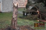Spadlé stromy v Semilech po větrné bouřce Sabine