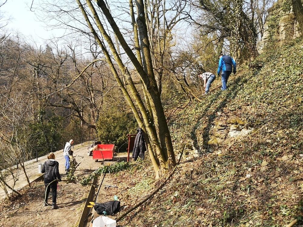 Opočno - úklid v parku<br />Autor: Archiv NPÚ, ÚPS na Sychrově