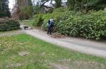 Sychrov - úklid parku
