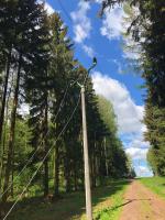 Opravy elektrického vedení v Trutnově
