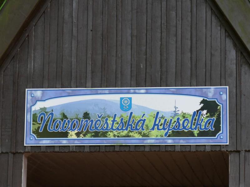 Novoměstská kyselka<br />Autor: Archiv KÚ Libereckého kraje