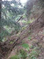 Pátrání po seniorovi v rozsáhlém okolí Černé hory
