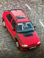 Pohřešovaná Alena Poláková ve svém autě