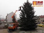 Instalalace osvětlení vánočního stromu v Semilech
