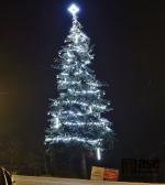 Vánoční strom ve Valteřicích