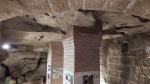 Na Valdštejně přezimuje 40 netopýrů