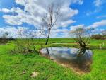 Kraj opět podpoří zadržování vody v krajině. Připraveno je 14 milionů
